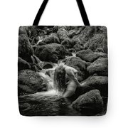 Smooth Curves. Tote Bag