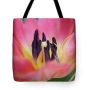 Smooth Passage  Tote Bag