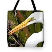 Snacking  Tote Bag