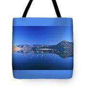Snags- Lake Isabella Tote Bag