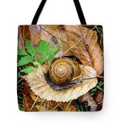 Snail Home Tote Bag