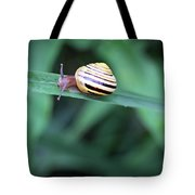 Snail In His Green Jungle Tote Bag