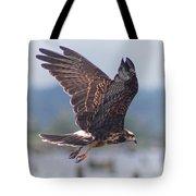 Snail Kite Tote Bag