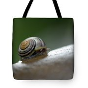 Snail On Rock Tote Bag