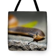 Snail Searching For Shell Tote Bag