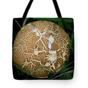 Snail Trails Squared Tote Bag