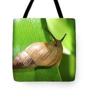Snail Work B Tote Bag