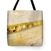 Snails Tote Bag by Stefano Piccini