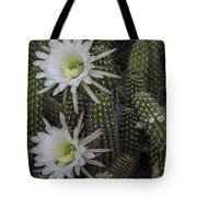 Snake Cactus Flowers Tote Bag