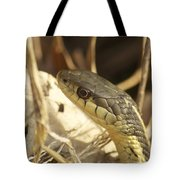 Snake Eye Tote Bag