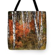 Snake River Canyon Tote Bag