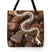 Snake Skeleton  Tote Bag