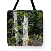 Snapped Tote Bag