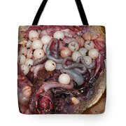 Snapping Turtle Dissection Tote Bag