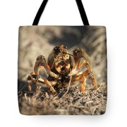 Snappy Tote Bag
