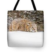 Sneaky Cat Tote Bag