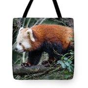 Sneaky Red Panda Tote Bag