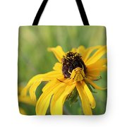 Sneaky Spider Tote Bag
