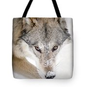 Sneaky Wolf Tote Bag