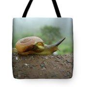 Sneal Tote Bag