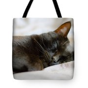 Snoozy Kitty Tote Bag