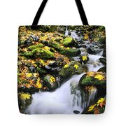 Snoqualmie National Fores Tote Bag