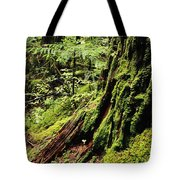 Snoqualmie National Forest Tote Bag