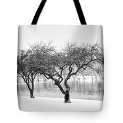 Snow Along The Schuylkill River Tote Bag