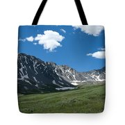 Snow And Mountains And Grass Tote Bag