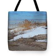 Snow And Sand Tote Bag
