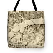 Snow Arch Tote Bag