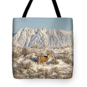 Snow-buck In Wyoming Tote Bag