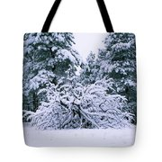Snow Burdened Tree In The Flatirons Tote Bag