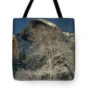 Snow-covered Black Oak Half Dome Yosemite National Park California Tote Bag