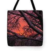 Snow Covered Branches At Sunset Tote Bag