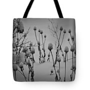 Snow Covered Coneflowers Tote Bag