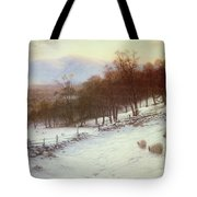 Snow Covered Fields With Sheep Tote Bag by Joseph Farquharson