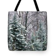 Snow-covered Forest, Wisconsin, Usa Tote Bag