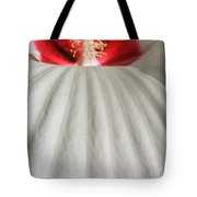 Snow Covered Hill Tote Bag