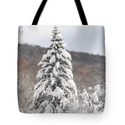 Snow Covered Spruce Tote Bag