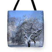 Snow-covered Sunlit Apple Trees Tote Bag