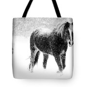 Snow Dance Tote Bag by Mark Courage