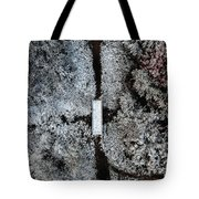 Snow Day In Austin Tote Bag