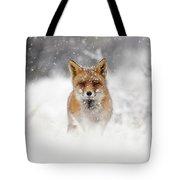 Snow Fox Series - Red Fox In A Blizzard Tote Bag