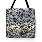 Snow Geese Spring Migration Tote Bag