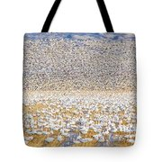 Snow Geese Take Off 1 Tote Bag