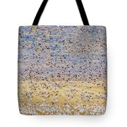 Snow Geese Take Off 3 Tote Bag