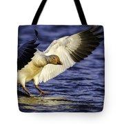 Snow Goose2 Tote Bag