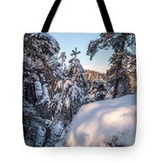 Snow In Saxon Switzerland Tote Bag