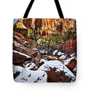 Snow In The Canyons Tote Bag